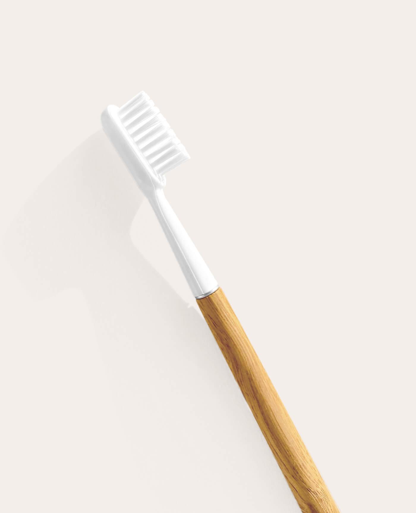 Brosse à dents rechargeable en chêne avec tête amovible de la marque Caliquo Made in France